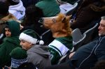 Man_with_Horse_Head_Mask_in_the_Stands